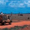 kudu-2-con-bufali